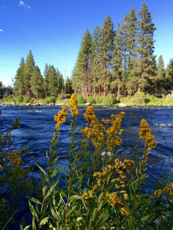 Deschutes River, Bend