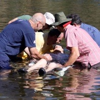 Carolyn's baptism in the American River